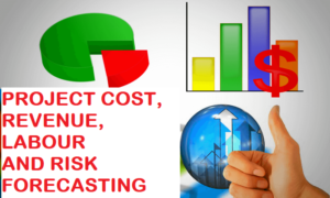 project forecasting cost cash flow and revenue
