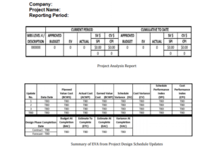 earned value data and sample report