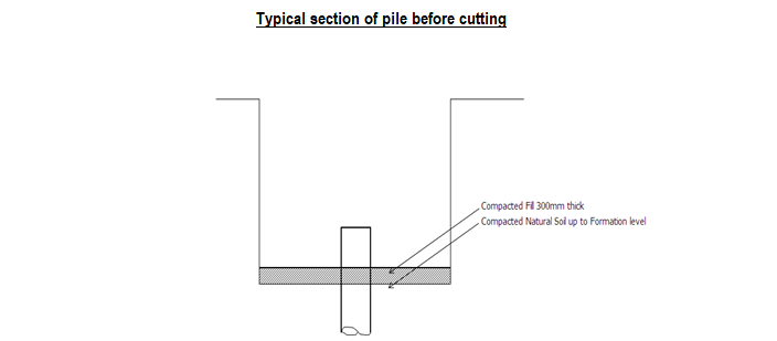 Typical section of pile before cutting